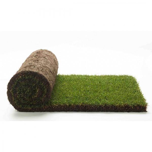 """Парковый газон """"Evergreen"""" для затенённых участков"""